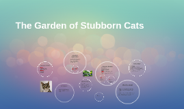 Copy of The Garden of Stubborn Cats
