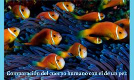 Comparación del cuerpo humano con el de un pez