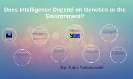Does Intelligence Depend on Genetic or the Environment?