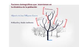 FACTORES INTERVIENEN  DINÁMICA POBLACIÓN