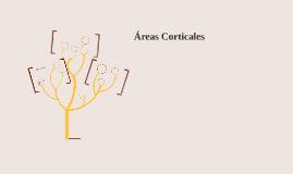 Copy of Áreas Corticales
