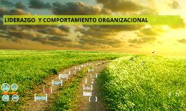 LIDERAZGO  Y COMPORTAMIENTO ORGANIZACIONAL