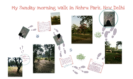 Sunday morning walk in the park with Neo
