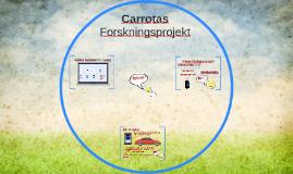 Carrotas og datasikkerhed