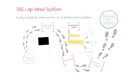 "MHI 542 Final Project-""The Lap-Band System"""