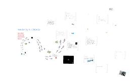 Psych120 Presentation-Wonder