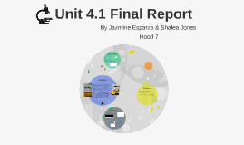 Unit 4 Final Report
