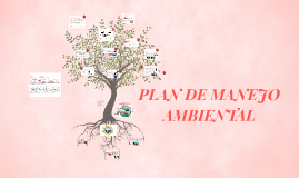 Copy of PLAN DE MANEJO AMBIENTAL