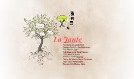 Copy of Le Jante