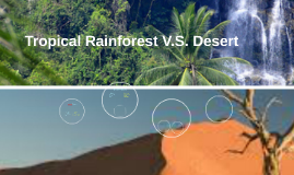 Tropical Rainforest V.S. Desert