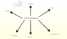 Copy of The 6 Kingdoms