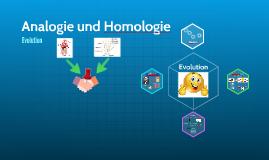 Analogie und Homologie