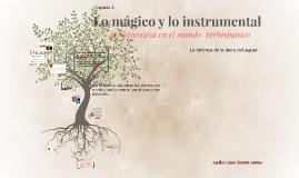 Lo mágico y lo instrumental