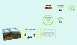 Copy of Copy of Principais Conceitos Relacionados à Impacto Ambiental