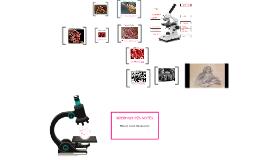 Copy of Copy of Microscope Template