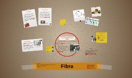 Copy of Fibra