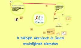 A Meska sikerének és üzleti ötletének bemutatása