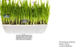 Kiełkowanie nasion
