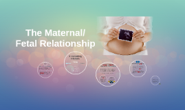 The Maternal/Fetal Relationship