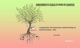 Copy of Copy of Agrupamento de Escolas de Marco de Canaveses