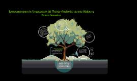 Copy of Lineamientos para la Organización del Trabajo Académico dura