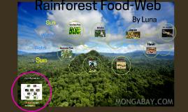 Rainforest Food-Web