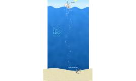 Bubbles - Free Prezi Template