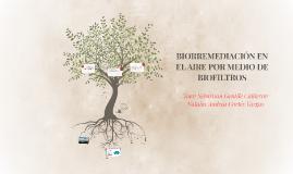 Biorremediacion del aire por medio de biofiltros