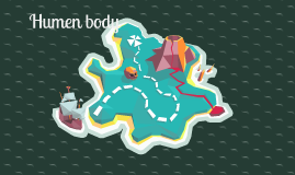 humen body