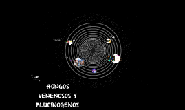 Copy of HONGOS VENENOSOS Y ALUCINOGENOS