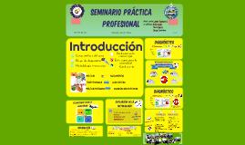 SEMINARIO PRÁCTICA PROFESIONAL