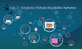 Cap. 2 - Estrutura e função dos tecidos humanos