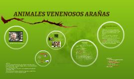 ANIMALES VENENOSOS ARAÑAS