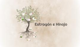 Estragón e Hinojo