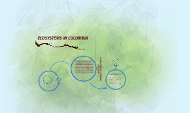 Copy of ECOSYSTEM IN COLOMBIA