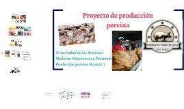 Producción Porcina final