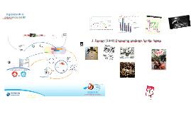 Digitalizando la experiencia del IB. v