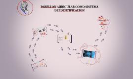 PABELLON AURICULAR COMO SISTEMA DE IDENTIFICACION