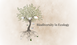 Biodiversity in Ecology
