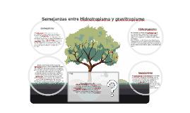 Semejanzas entre Hidrotropismo y gravitropismo