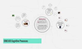 EDUC 613 Cognitive Processes
