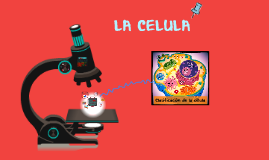 Copy of como se relaciona la celula con el medio