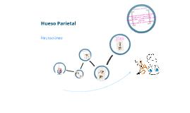 Anatomía del Hueso Parietal
