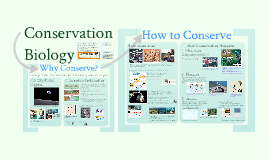 AP Bio- Ecology 5: Conservation Biology