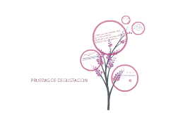 PRUEBAS DE DEGUSTACIÓN