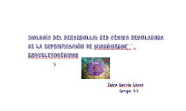 BIOLOGÍA DEL DESARROLLO: RED GÉNICA REGULADORA DE LA ESPECIF