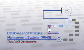 Database and Database Management System (DBMS)