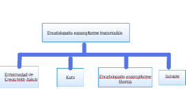 Encefalopatía espongiforme transmisibles
