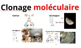 210-A06-HY : Clonage moléculaire