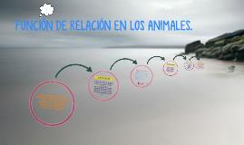 Copy of FUNCIÓN DE RELACIÓN EN LOS ANIMALES.